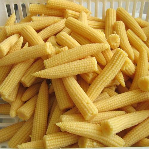 ข้าวโพดฝักอ่อน Baby corn